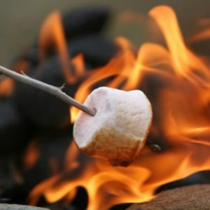 close up of a marshmallow roasting over a fire